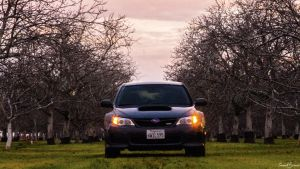 Wrx in the orchards.  by Saavzz