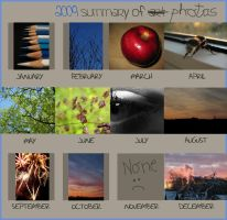 Summary Of 2009 Photography by ausrejurke