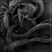 White by ZaidaCrescent