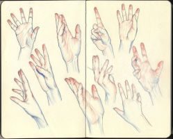 Hands Color 01 by NathanielPilgrim