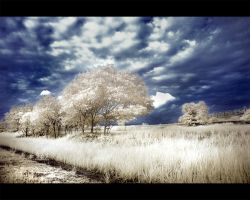 Dramatic Infrared 3 by Pandowo014