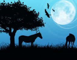 Under the full moon by Ilsy