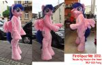 MLP Pony Fursuit/Costume New 'Firesparkle'  G3,5 by AtalontheDeer