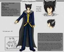 Character sheet: Joshua by Yowsie