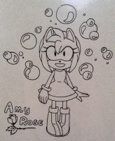 Amy Rose by CharityGoodwill