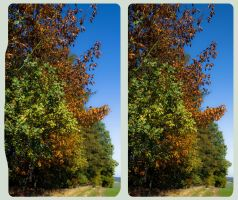 Seasonal Coloring HDR 3D by zour