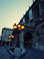 Budapest Opera by Criquet