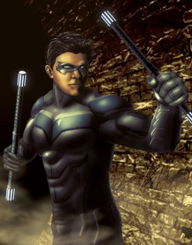 Nightwing by Steelbred
