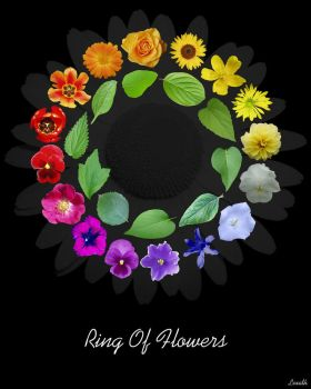 Black Ring Of Flowers by lexidh