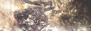 Crysis 2 by shk828