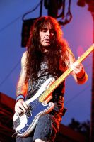 Iron Maiden: Steve Harris IV by basseca