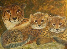 cheetahs by dlockett2