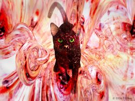 An Abstracat by Zethara