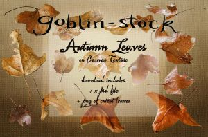 Autumn Leaves on Canvas_Pack by GoblinStock