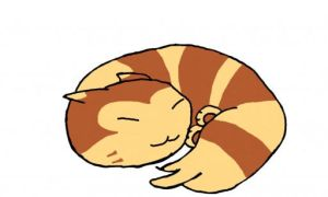 Sleepy Furret by AuthorNumber2