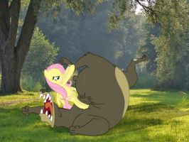 Fluttershy: Bear Wrestling in the Woods by Paris7500