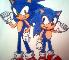 OHSCM04- 2 Sonics by Sky-The-Echidna
