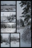 Winter Package II by Eirian-stock
