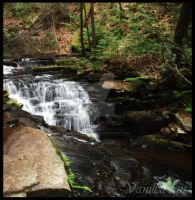 Meadow Grounds Falls II by Sir-Isac-Vanillabean