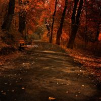 Forever Autumn by Dina-bv