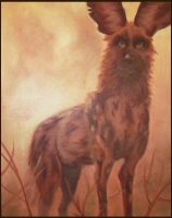 African Wild Dog by silver303