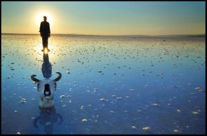 brother Conan by salihguler