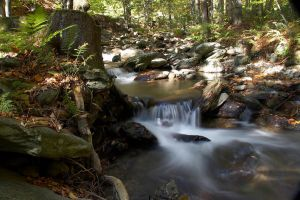 Flowing Brook 6485228 by StockProject1