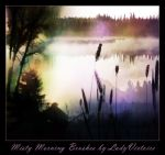 Misty Morning Brushes 2 by LadyVictoire-Brushes