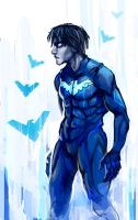 Nightwing by calonarang