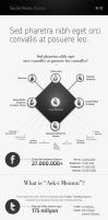 Social Media Statics Infographic by GoldenBugSpread