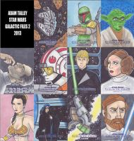 Galactic Files 2 Star Wars Cards by phymns