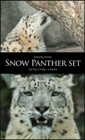 Snow Panther Set by Azenor-stock