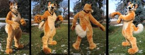 Fursuit - Kaltag by sophiecabra