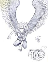 Maximum Ride: Max by Soul-Malfunction