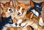 The Pack by Silvixen