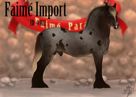 Faime Import 812 by Lone-Onyx-Stardust