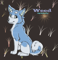 Weed by Zera24