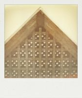 PX600 Silver Shade DRY by rawimage