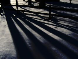Shadows in the Snow by C-Dizzle