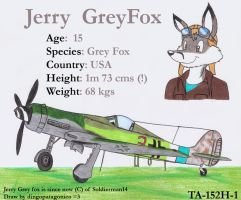 Jerry and his TA-152H by DingoPatagonico