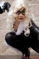Black Cat by miss-kitty-j