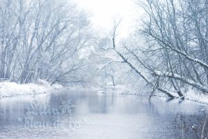 Silvery River by LiliaLaurent