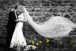 Wedding Session III by chileck2003