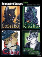 Badges AnthroCon 2008 - part 2 by TaniDaReal