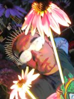 Thorn Crowned Hippie Fool by Danny Hennesy by MushroomBrain