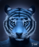 Blue Tiger by T-oxis