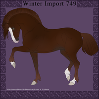Nordanner Winter Import 749 by DemiWolfe