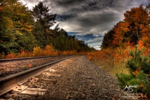 HDR Autumn Tracks 2 by Nebey