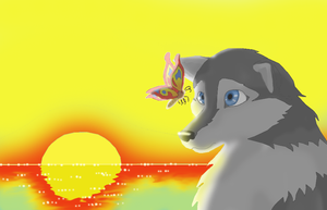 The Wolf and the Butterfly by NarmiCreator