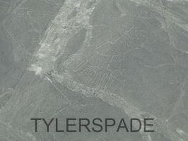 Nazca lines: The Hand by Tylerspade